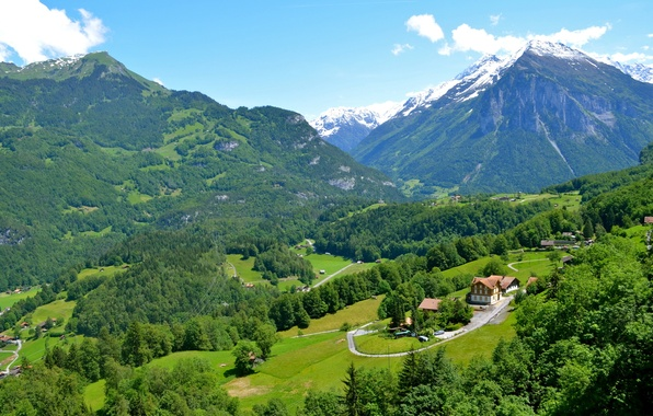 Picture greens, trees, mountains, field, Switzerland, valley, houses, forest, Rueggisberg