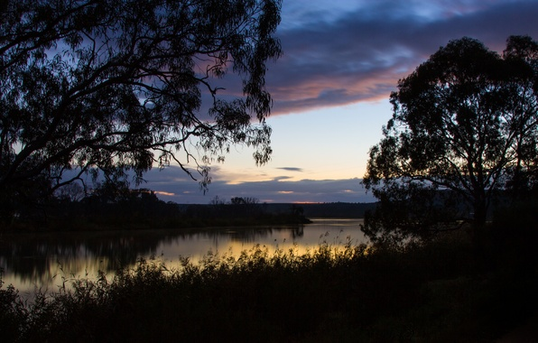 Picture the sky, grass, clouds, trees, reflection, river, dawn, shore, morning, Australia