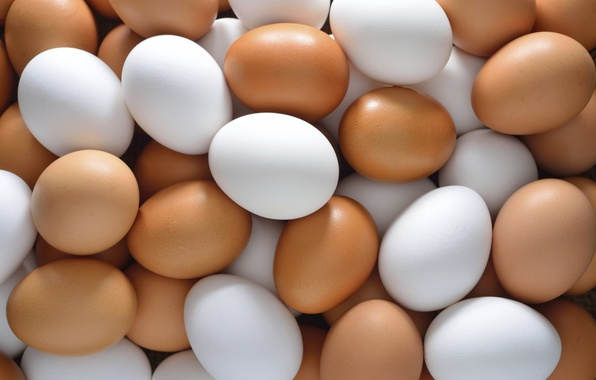 Picture colors, eggs, chicken