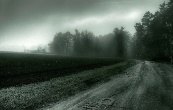 Picture road, field, trees, the darkness