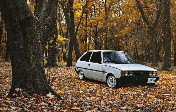 Picture autumn, leaves, ZAZ, stance, 1102, tavria, Tavria