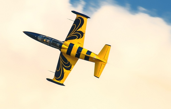 """Picture flight, the plane, """"Albatross"""", Albatros, combat training, Aero L-39C"""