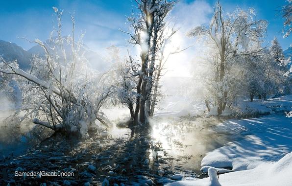 Picture winter, the sun, snow, landscape