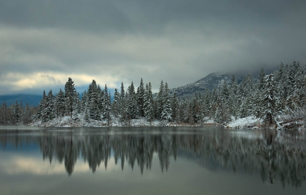 Picture winter, forest, snow, trees, mountains, lake, reflection, spruce, tree