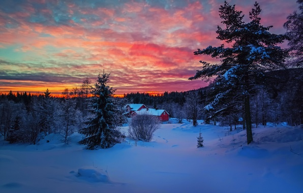 Picture winter, forest, the sky, clouds, snow, sunset, house, paint, the evening
