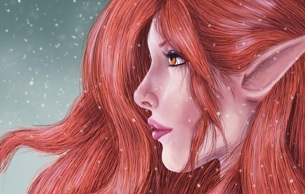 Picture look, hair, art, profile, elf, fantasy, ears
