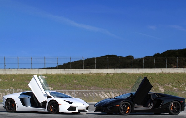 Picture white, the sky, red, white, lamborghini, black, aventador, lp700-4, Lamborghini, aventador, nilotica, doors