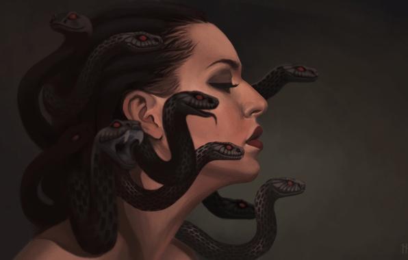 Picture snakes, art, profile, gargona, Medusa
