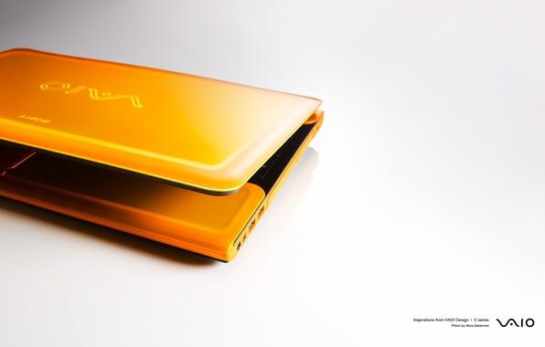 Picture orange, white background, laptop