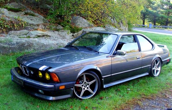 Picture grass, trees, stones, tuning, drives, sports, avtomobil, BMW E24 633