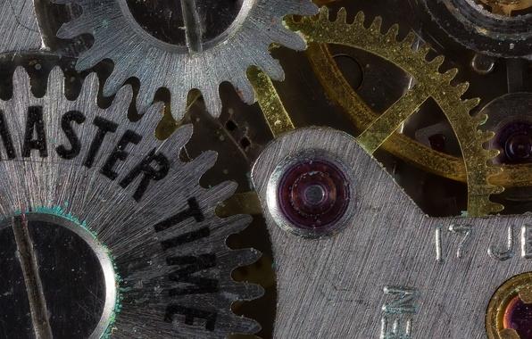 Picture macro, time, watch, mechanism, gear