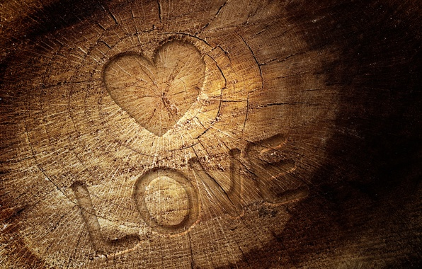 Picture love, cracked, letters, tree, the inscription, heart, texture