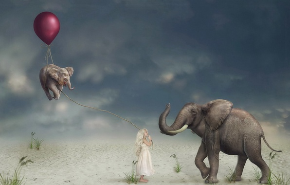 Picture ball, girl, elephants