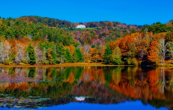 Picture autumn, forest, trees, landscape, lake, house, reflection, river, mansion