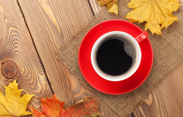 Picture autumn, Cup, maple, autumn, leaves, cup, coffee, fall, autumn leaves, maple