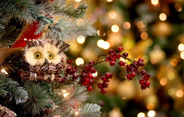 Picture winter, decoration, berries, holiday, owl, toys, tree, spruce, New Year, Christmas, red, tree, Christmas, New …