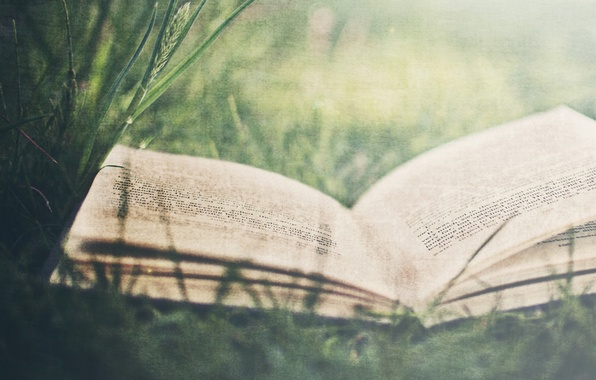 Picture white, grass, leaves, retro, letters, mood, books, leaves, book, letter, words, the phrase, the word, …