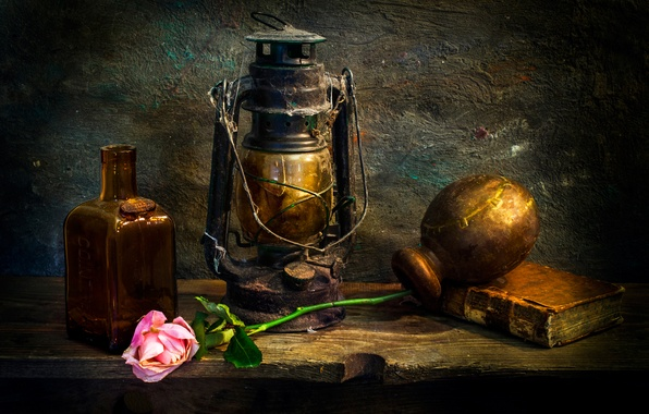 Picture rose, lamp, dust, book, Love-lorn