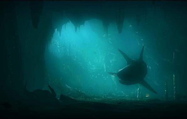 Picture sea, rocks, shark, art, underwater world