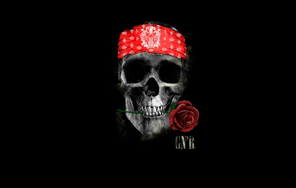 Picture rose, skull, headband