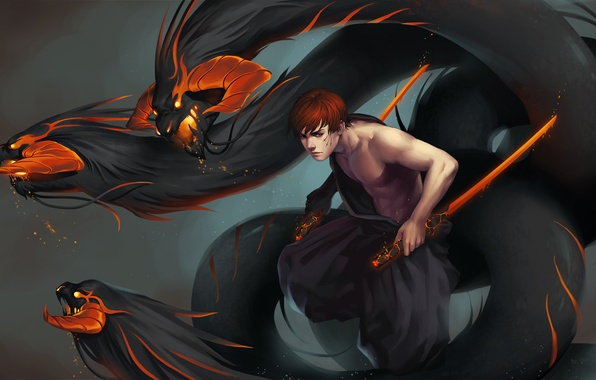 Picture fire, sword, the demon, guy, art, inferno