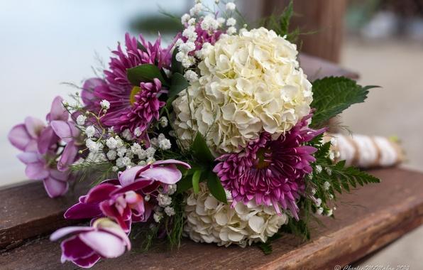Picture bouquet, hydrangea, Dahlia