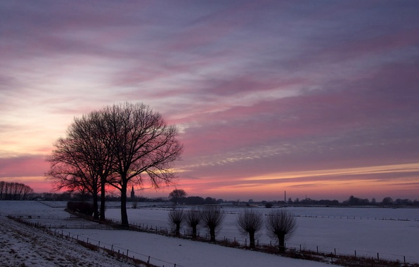 Picture winter, field, trees, landscape, sunset, nature