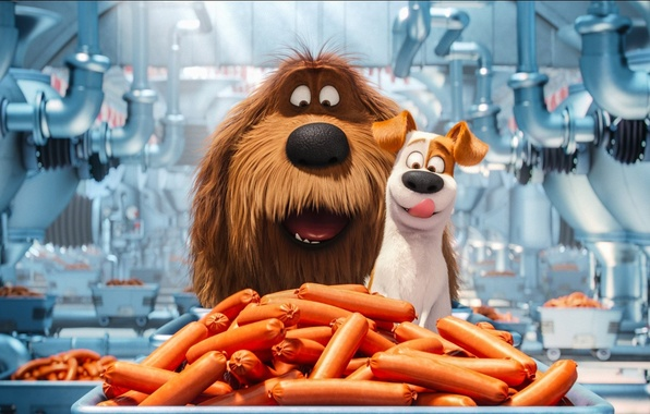 Picture cinema, wallpaper, happy, food, dog, cartoon, movie, film, happiness, pet, Max, sugoi, subarashii, official wallpaper, …