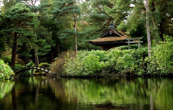 Picture greens, trees, pond, Park, England, the bridge, gazebo, Tatton Park
