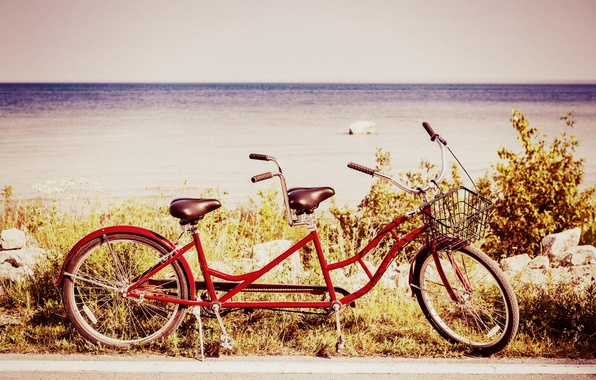 Picture sea, greens, the sky, water, nature, bike, river, background, widescreen, Wallpaper, basket, mood, plants, wheel, …