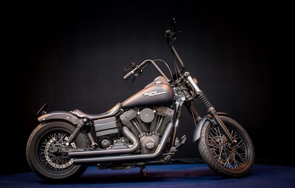 Picture Harley Davidson, motor bike, Mean machine