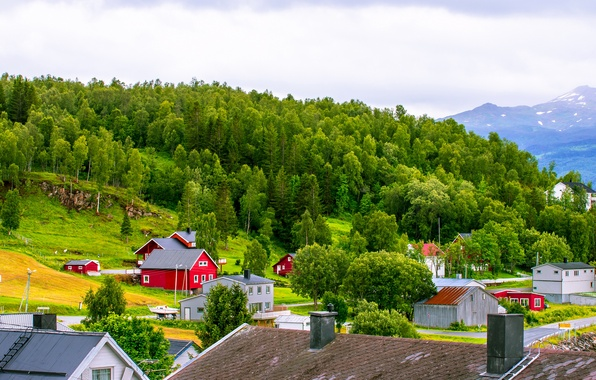 Picture roof, the sky, grass, clouds, trees, mountains, home, slope, Norway