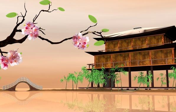 Picture Sakura, Sakura, Eastern landscapes, house on the water, house on the water, Eastern landscapes