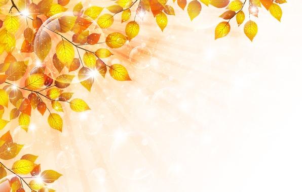 Picture autumn, leaves, bubbles, sprig, glitter