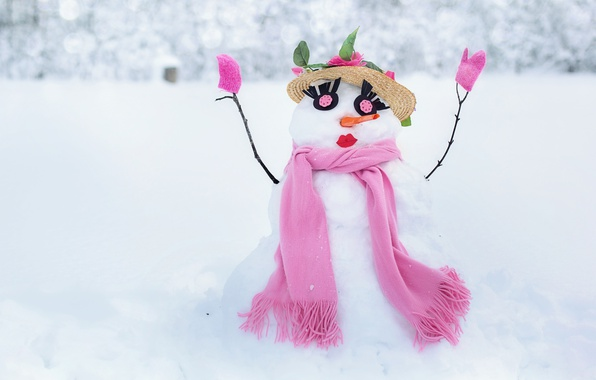 Picture winter, white, eyes, snow, eyelashes, background, pink, holiday, new year, Christmas, scarf, snowman, hat, sponge, …