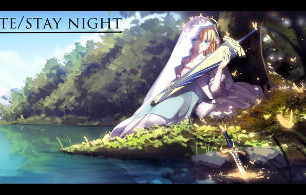 Picture girl, butterfly, weapons, shore, sword, anime, art, veil, saber, fate stay night, magicians, zhkahogigzkh