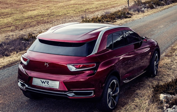 Picture machine, Concept, Citroen, rear view, Citroen, Wild Rubis