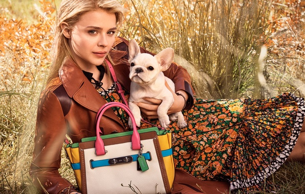 Picture photoshoot, brand, Chloe Grace Moretz, Chloë Grace Moretz, Chloe Grace Moretz, Chloe Moretz, Coach, 2016