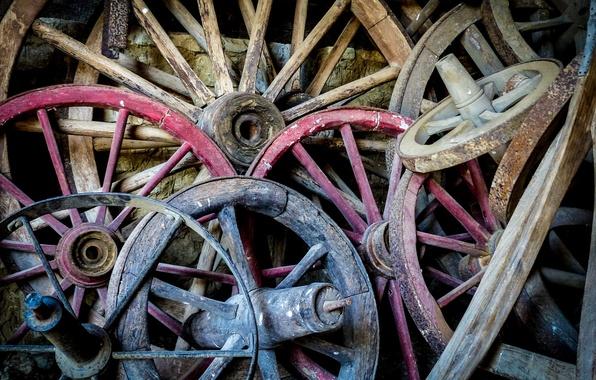 Picture macro, background, wheel