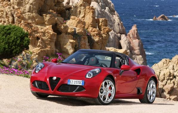 Picture Alfa Romeo, spider, Alfa Romeo, Spider, 2015, 960