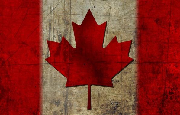 Picture flag, Canada, maple leaf, canada, flag