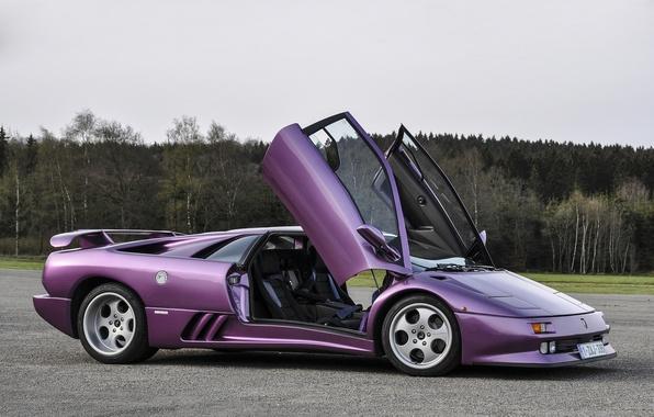Picture purple, trees, Lamborghini, diablo, tree, purple, Lamborghini, Diablo, se30