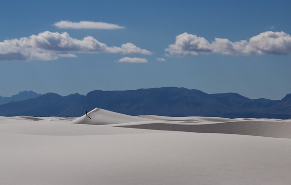 Picture landscape, desert, people