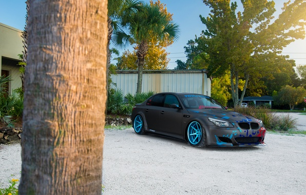 Picture BMW, Car, Blue, Front, Sun, Sport, Wheels, Beemteam