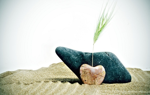 Picture sand, wheat, stones, background, widescreen, Wallpaper, mood, heart, plant, rye, wallpaper, form, ears, heart, widescreen, …