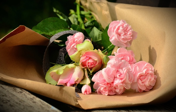 Picture flowers, paper, Board, roses, bouquet, bench, packaging, clove
