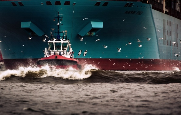 Picture Water, Sea, Board, Birds, Case, The ship, Seagulls, A container ship, Tank, Waste, Maersk, Maersk ...