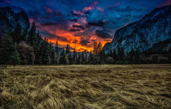 Picture grass, clouds, trees, sunset, mountains, nature, meadow, CA, USA, USA, Yosemite national Park, Yosemite National …