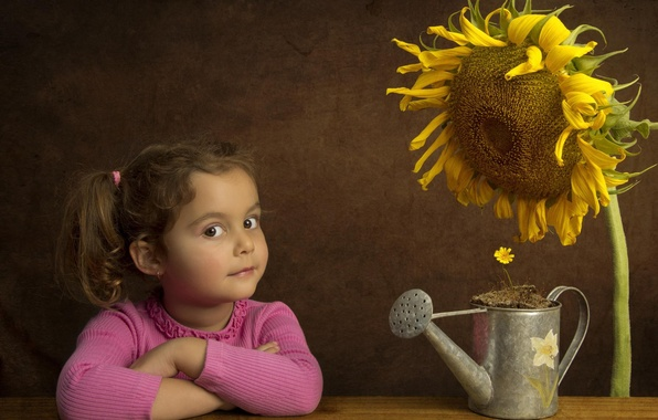 Picture flower, sunflower, girl, lake