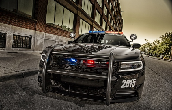 Picture face, black, Dodge, Dodge, Black, Charger, Pursuit, Challenger, 2015